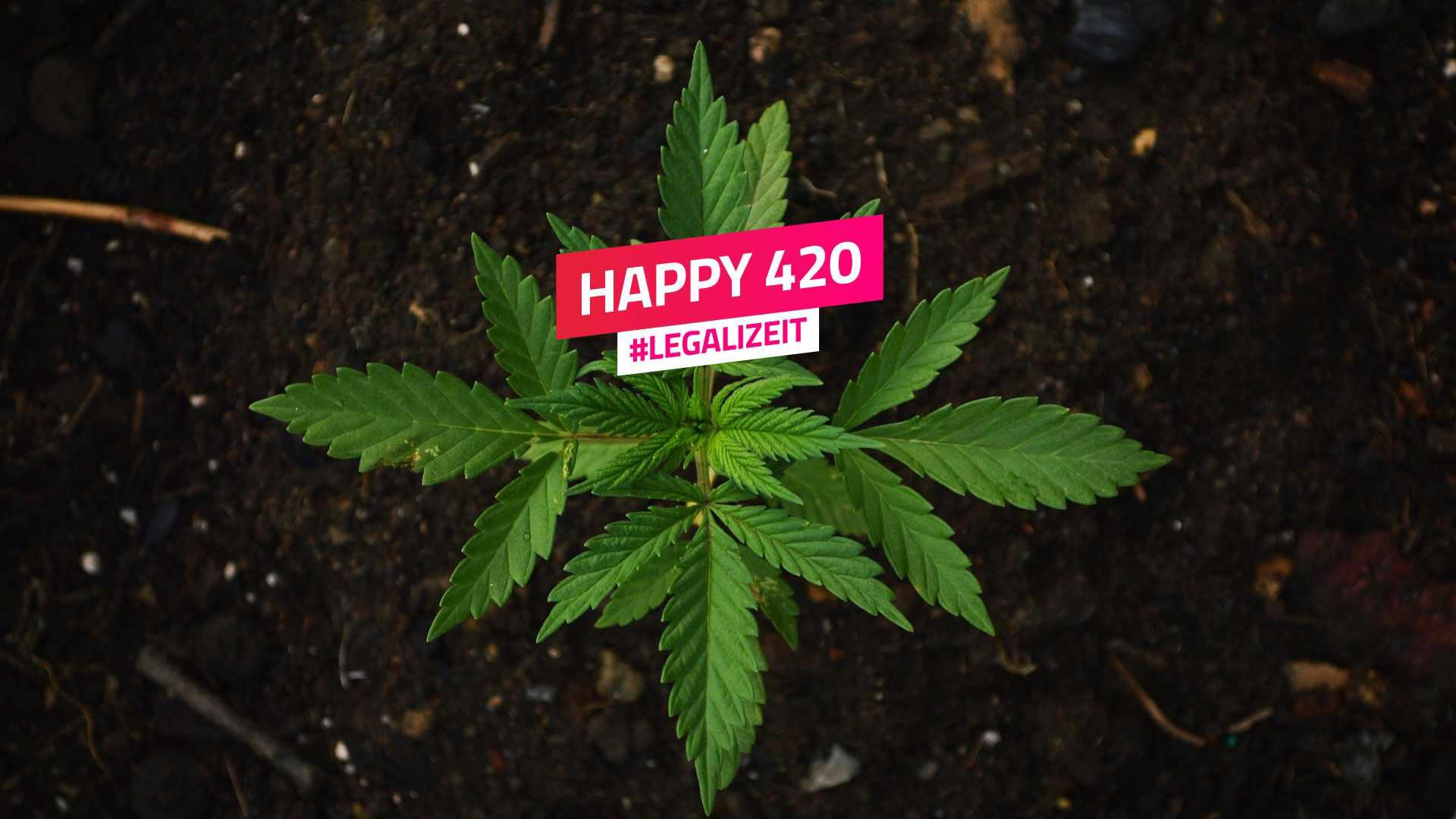 Happy 420 – Drogenpolitik neu denken!